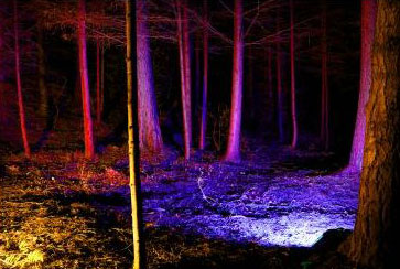 The Enchanted Forest, Pitlochry 2012